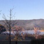 Lake Eildon blossom
